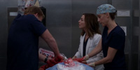 Grey's Anatomy 15.09