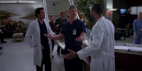 Grey's Anatomy 9.17