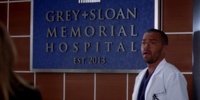 Grey's Anatomy 9.18
