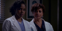 Grey's Anatomy 11.19