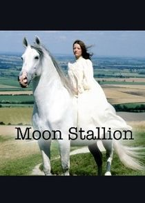 The Moon Stallion